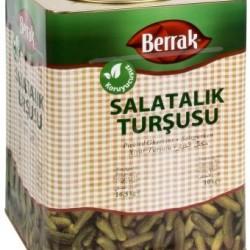 Salatalık Turşu 3 No